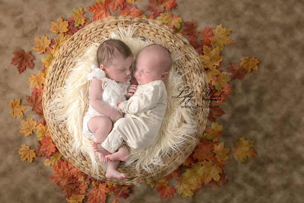 naissance de jumeaux dans le var près de brignoles. jumeaux en photo sur le thème de l'automne