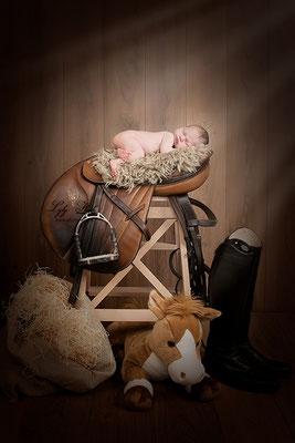 photographe d'art bébé équitation cheval