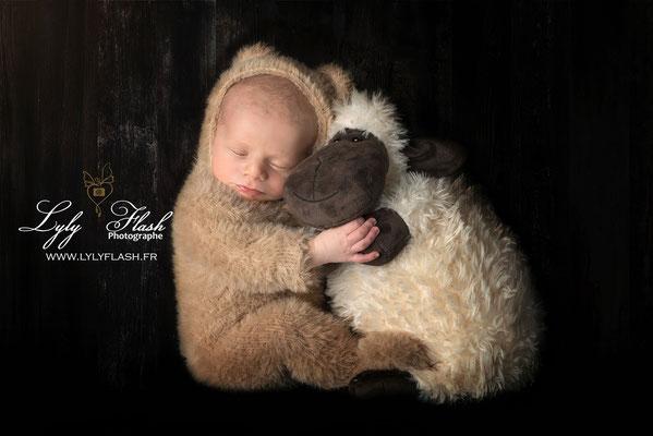 photographe nouveau-né  La londes les maures