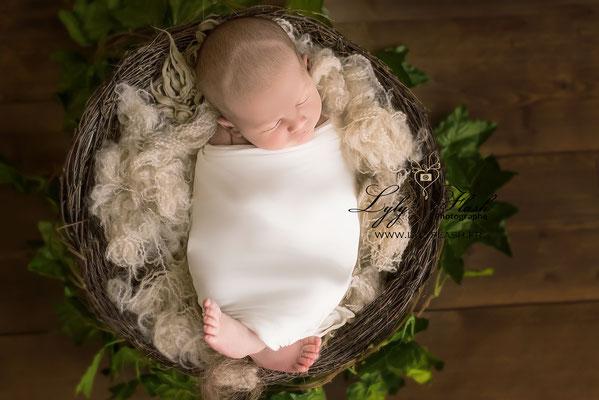 photographe pour bébé à la naissance dans le var en studio photo