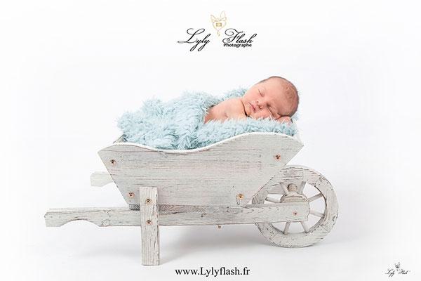 bébé dans une brouette une photographe spécialisée dans la photo de naissance