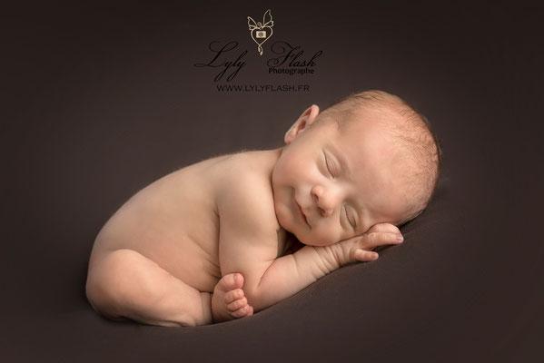 photographe bébé brignoles