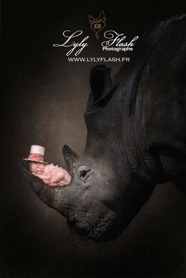 Photographe naissance bébé  zoo rhinoceros