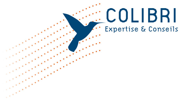 Logo pour le cabinet d'experts comptable Colibri