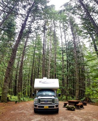 Mega cooler Campingplatz im Pacific Rim Nationalpark. Man fühlt sich ein bisschen wie in Jurassic World:)