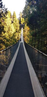 Capilano Hängebrücke