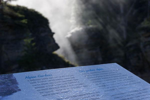 Athabasca Falls. Und kalt:)
