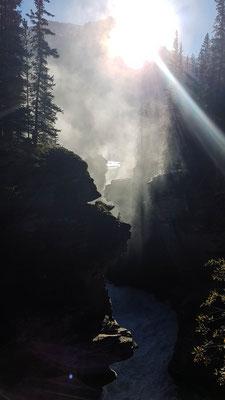 Athabasca Falls. Es war noch frühmorgens
