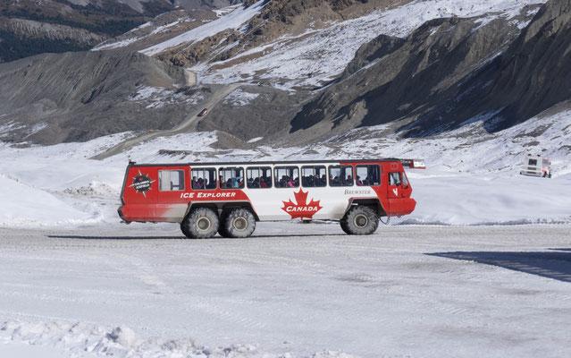 Athabasca Gletscher. Mit einem Snowcoach konnte man auf den Gletscher.