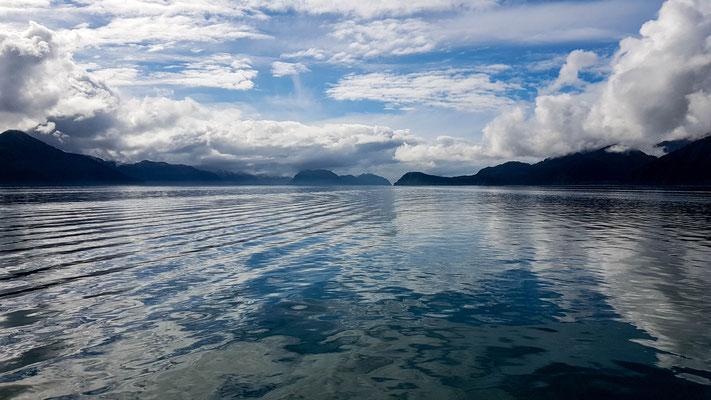 Bootstour Kenai Fjords