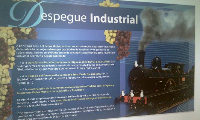 XIX et XX ième siècles, le développement industriel