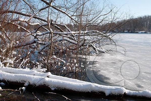 100306_DSC0066 Schnee Winter