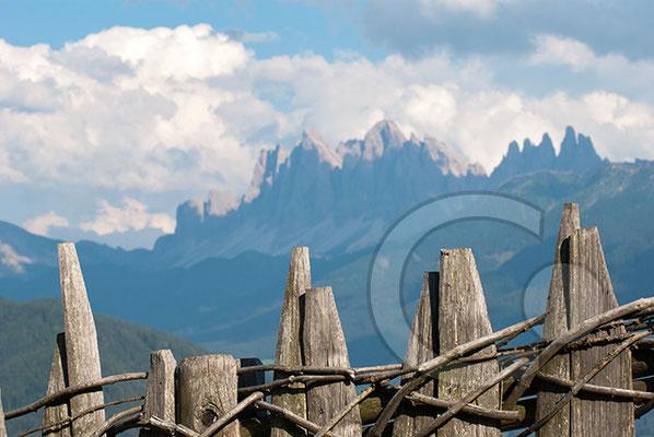 120805_DSC0170 Garn Zaun Südtirol Italien
