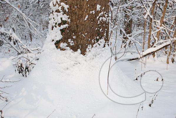 100102_DSC0042 Schnee Winter