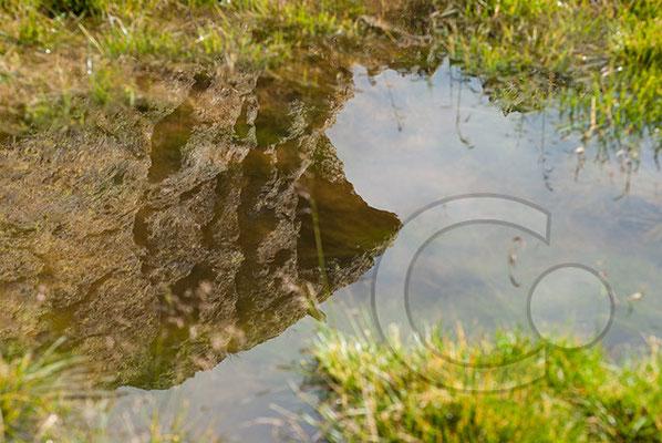 120807_DSC0392 Wasser Spiegelung Südtirol Italien