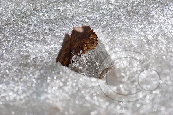 110226_DSC0008 Eis Winter