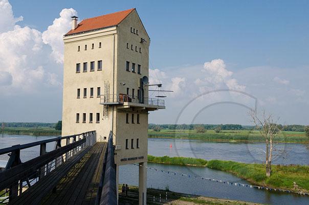 140730_RAW9427_Groß-Neuendorf