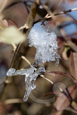 100307_DSC0124 Eis Winter