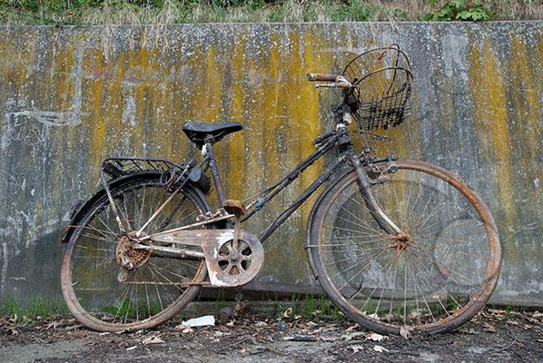 090729-_DSC0009 Hannover Mittellandkanal Fahrrad