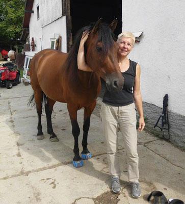 """Indiano mit Megasus Horserunners """"Med 'n' Rehab"""""""