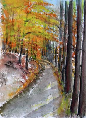 Waldweg am Wilisch im Herbst 21x30