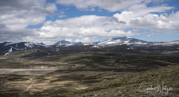 De berg van Dovrefjell