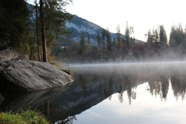 Nebelschwaden auf dem See
