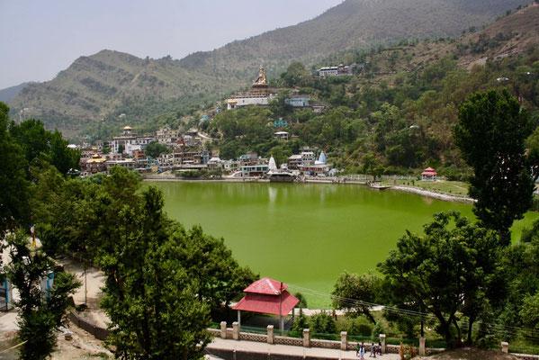 Einen Tag später dann das Bergdorf Rewalsar mit seinem verzauberten See und der Statue des Tantrameisters Padmasambhava