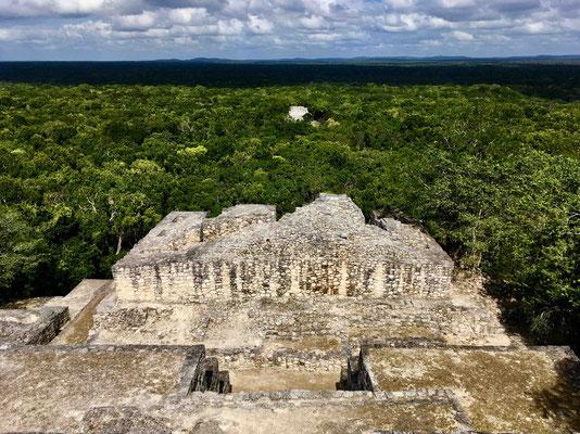 Dies ist der Blick von der Hauptpyramide in Calakmul