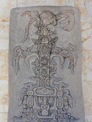 Von Bacalar aus erkunden wir das Herzland der Mayas ...