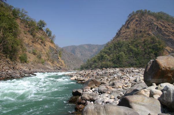 Der Ganges, der heiligste Fluss Indiens, kommt kühl und klar aus den Vorbergen des Himalaya ...