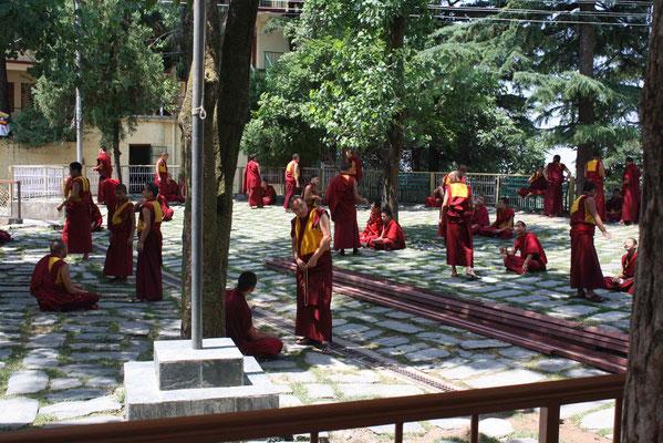Zumindest aber erleben wir die Mönche bei den rituellen Disputen, die zu ihrer Ausbildung gehören