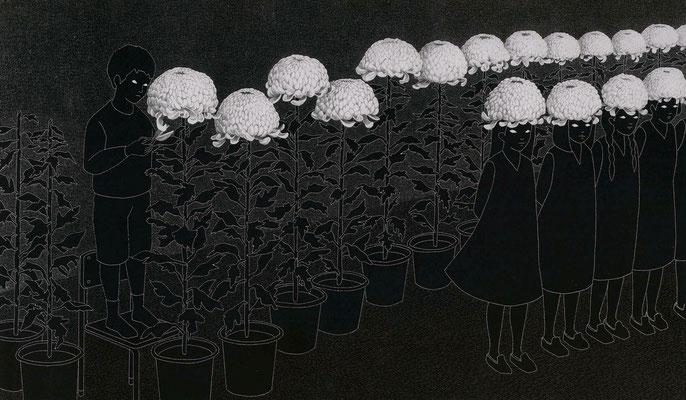菊の品評会  ©2011 ako sato. all right reserved.