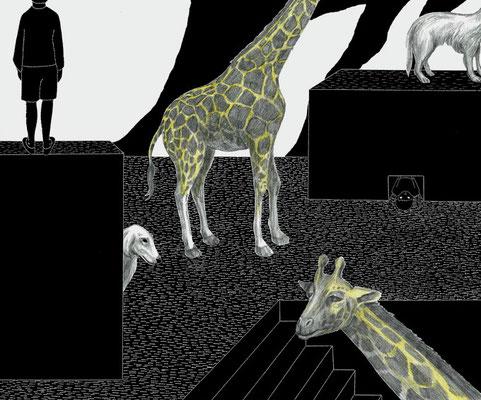 キリンと犬と人 ©2014 ako sato. all right reserved.