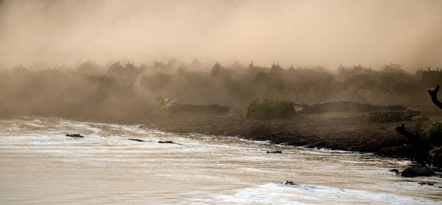 Kaburro Crossing in einer riesigen Staubwolke