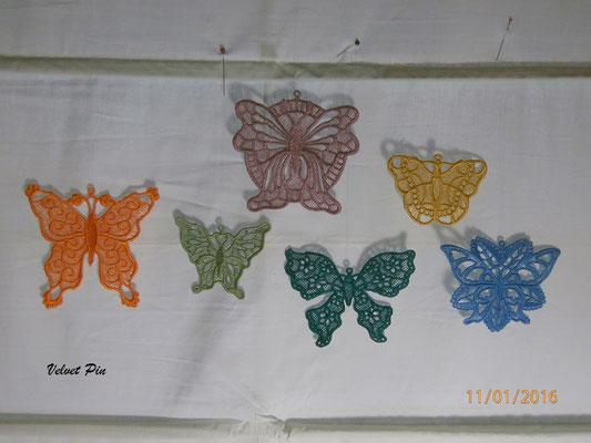 Schmetterlinge von