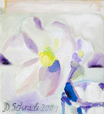 Dorothea Schrade, Christrose, 2001, Öl/LW, 22x21 cm