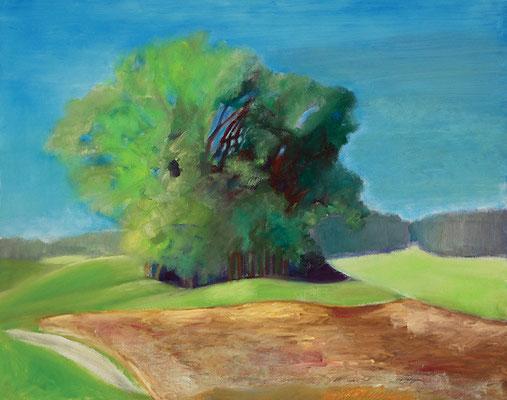 Dorothea Schrade, 12 Uhr Mittags im August, 2011, Öl auf Leinwand, 80 x 100 cm