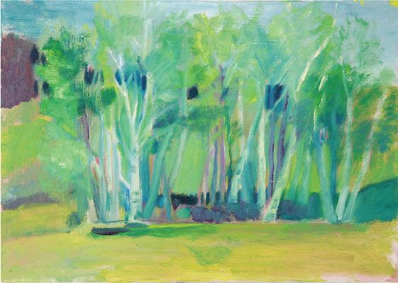 Dorothea Schrade, Birkenwälder, 2009, Öl auf Leinwand, 50 x 70 cm