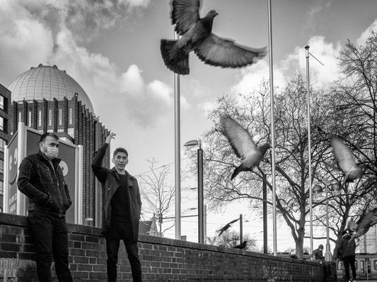 25. Dezember - Wegen des Lockdowns soll das Füttern der Tauben ausnahmsweise erlaubt sein. Das stößt bei den Innenstadthändlern jedoch auf Unverständnis.