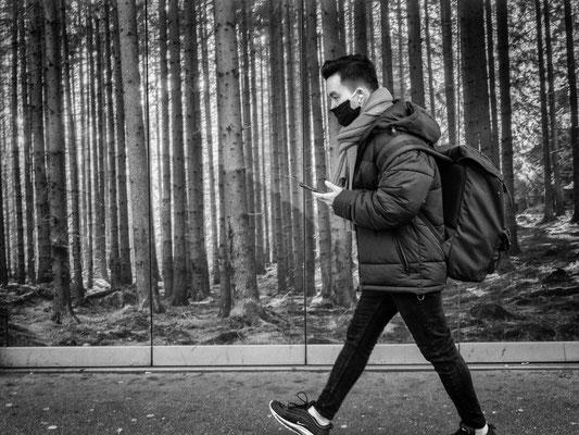 20. Januar - Unterwegs im Stadtwald