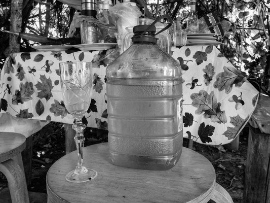 Es gibt auch Birkenwasser - ganz ohne Alkohol