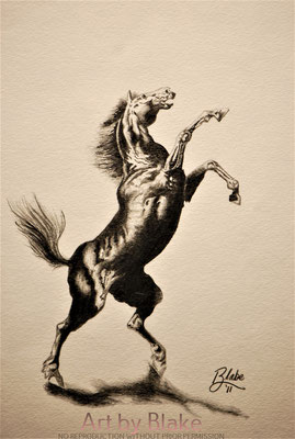 'The Black Horse', In Memorandum for Bobby by Blake 2011