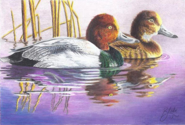 """'Tranquility"""" by Blake 2012"""