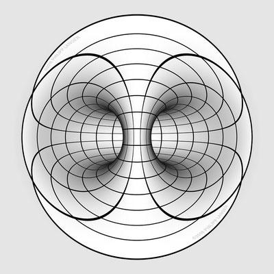 Torus Inner View (2016)