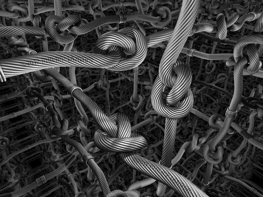 Knots' World (2017)