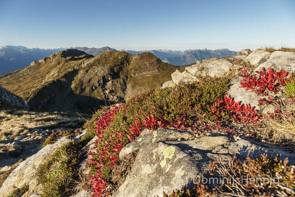 Herbst im Berner Oberland