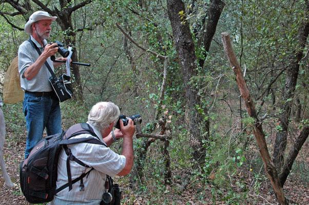 les photographes en pleine action