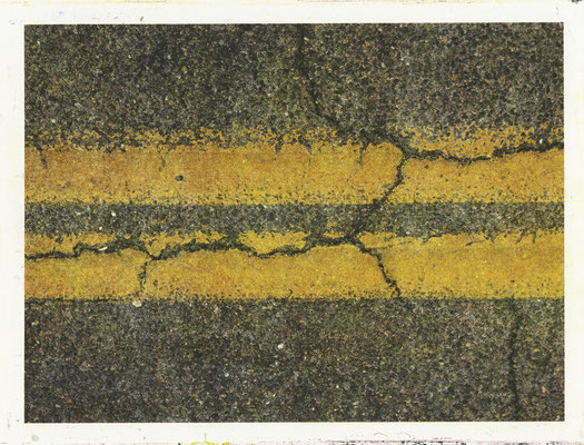 "#11. Title: Aposematic Double Yellow, 13"" X 19"", four-color hand printed lithograph, printed in an edition of 13, 2013"