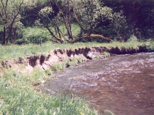 starke Ufererosion